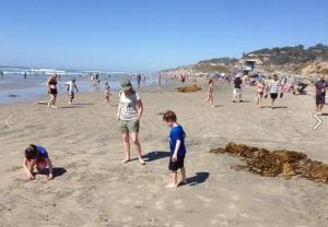 beach_day